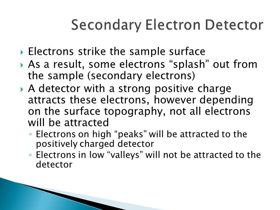 Secondary Electron Detector