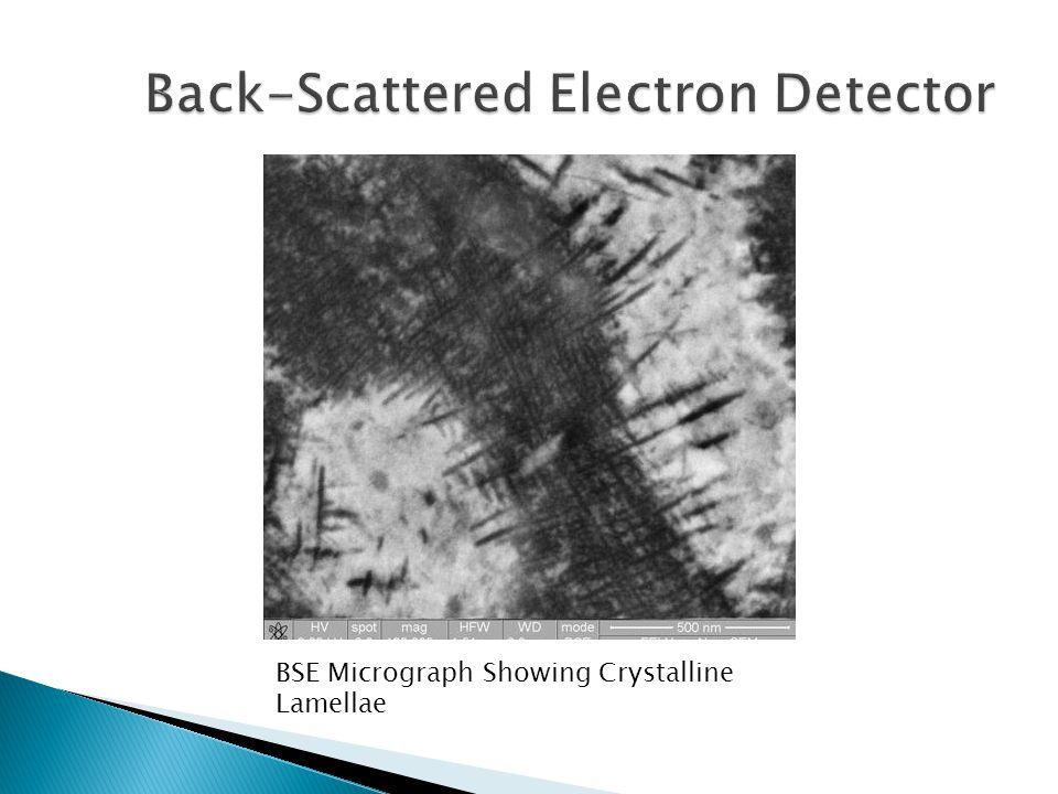 Back-Scattered Electron Detector
