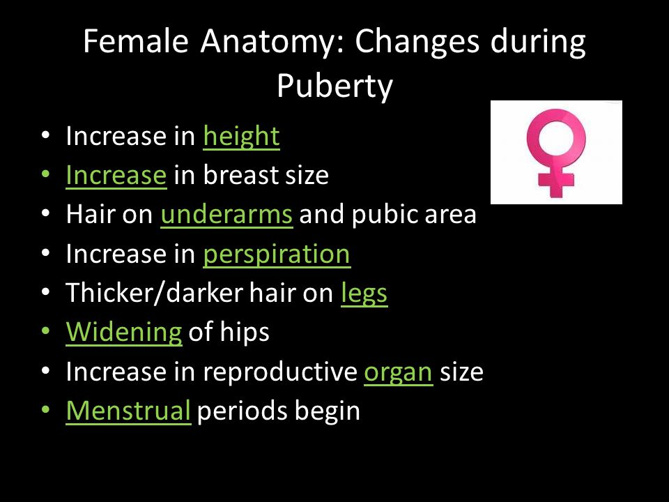 Female Anatomy: Changes during Puberty