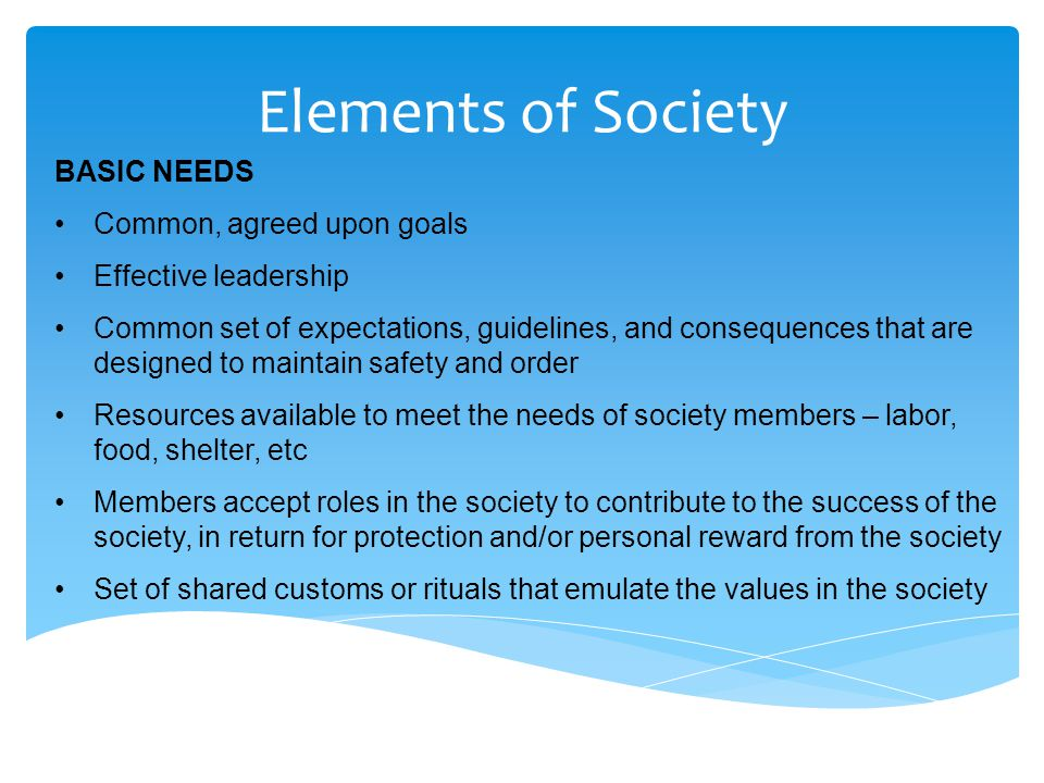 Elements of Society BASIC NEEDS Common, agreed upon goals