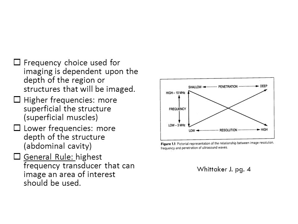 Lower frequencies: more depth of the structure (abdominal cavity)