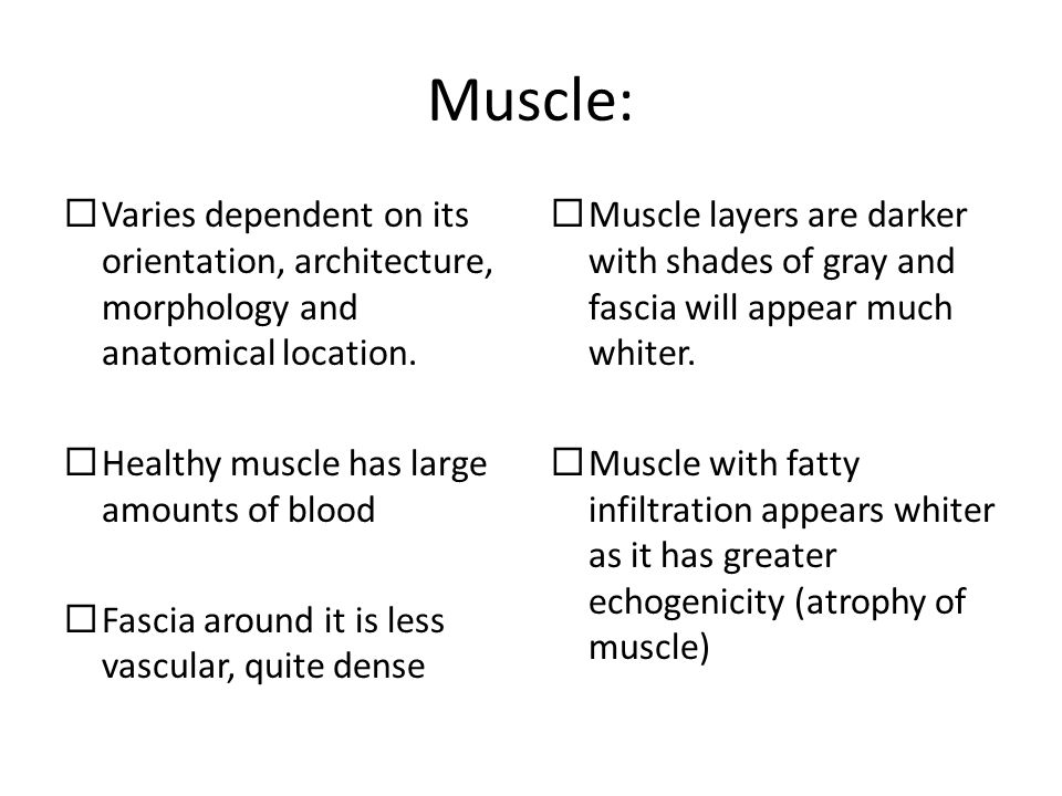 Muscle: Varies dependent on its orientation, architecture, morphology and anatomical location. Healthy muscle has large amounts of blood.