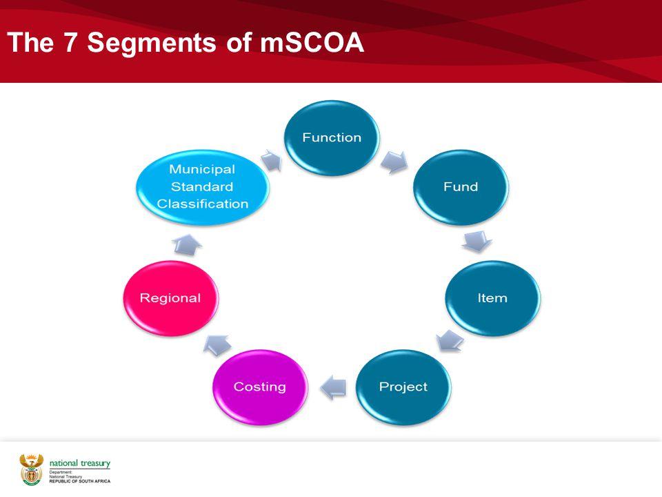 The 7 Segments of mSCOA National Treasury