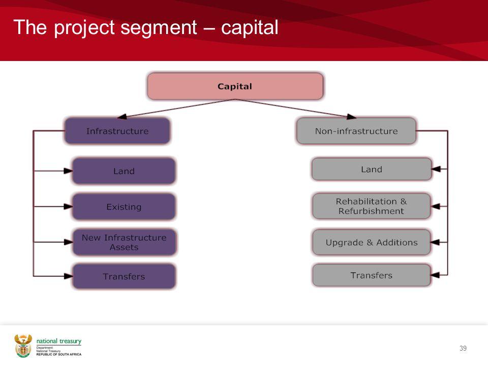 The project segment – capital