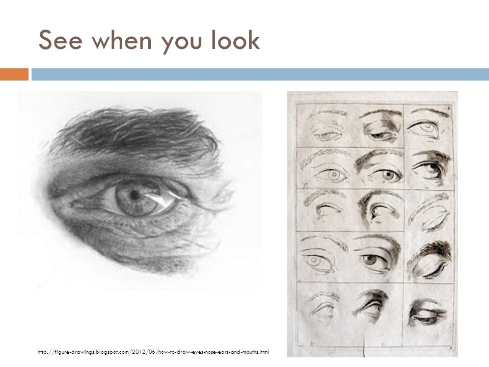 See when you look http://figure-drawings.blogspot.com/2012/06/how-to-draw-eyes-nose-ears-and-mouths.html.