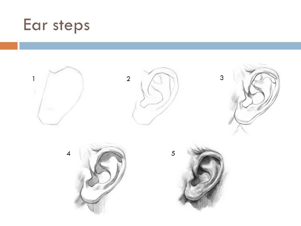 Ear steps 1 2 3 4 5