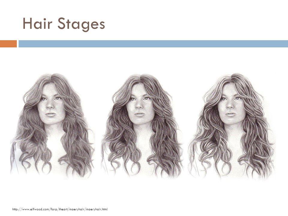 Hair Stages http://www.elfwood.com/farp/theart/maeryhair/maeryhair.html