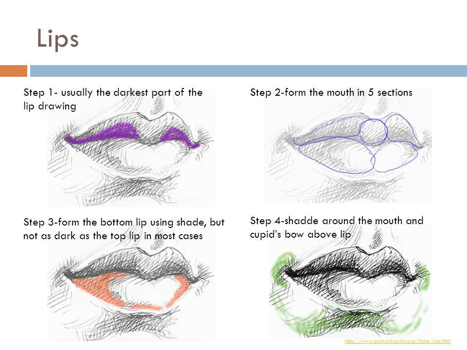 Lips Step 1- usually the darkest part of the lip drawing