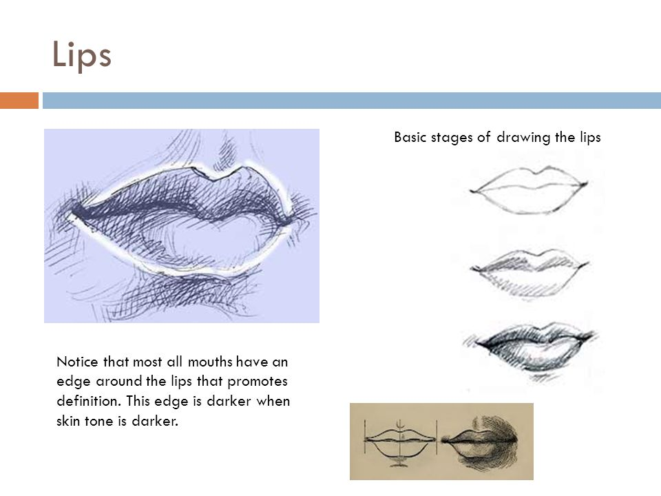 Lips Basic stages of drawing the lips