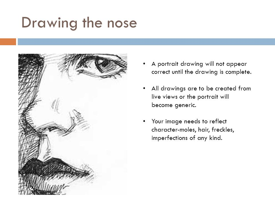 Drawing the nose A portrait drawing will not appear correct until the drawing is complete.