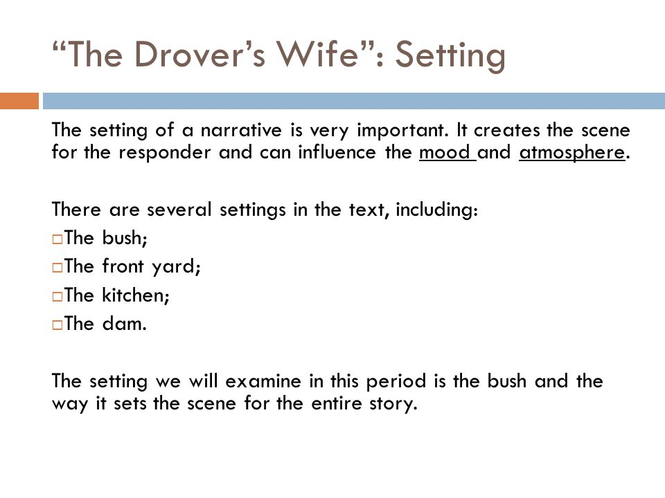 The Drover's Wife : Setting
