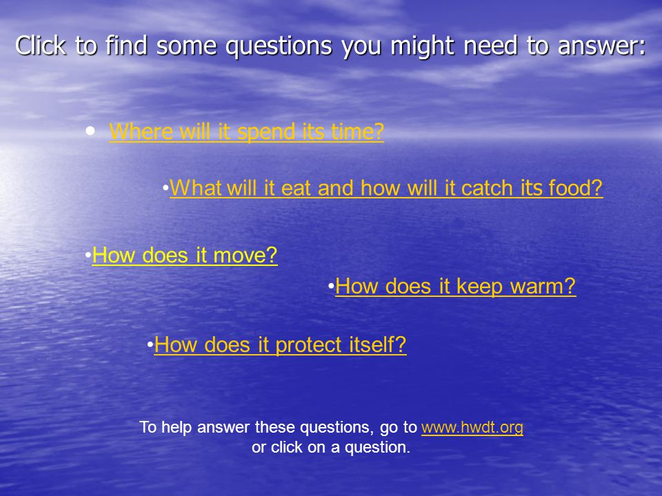 Click to find some questions you might need to answer: