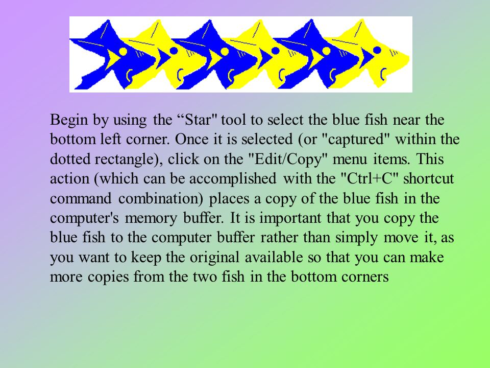 Begin by using the Star tool to select the blue fish near the bottom left corner.