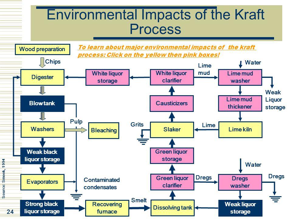 Environmental Impacts of the Kraft Process