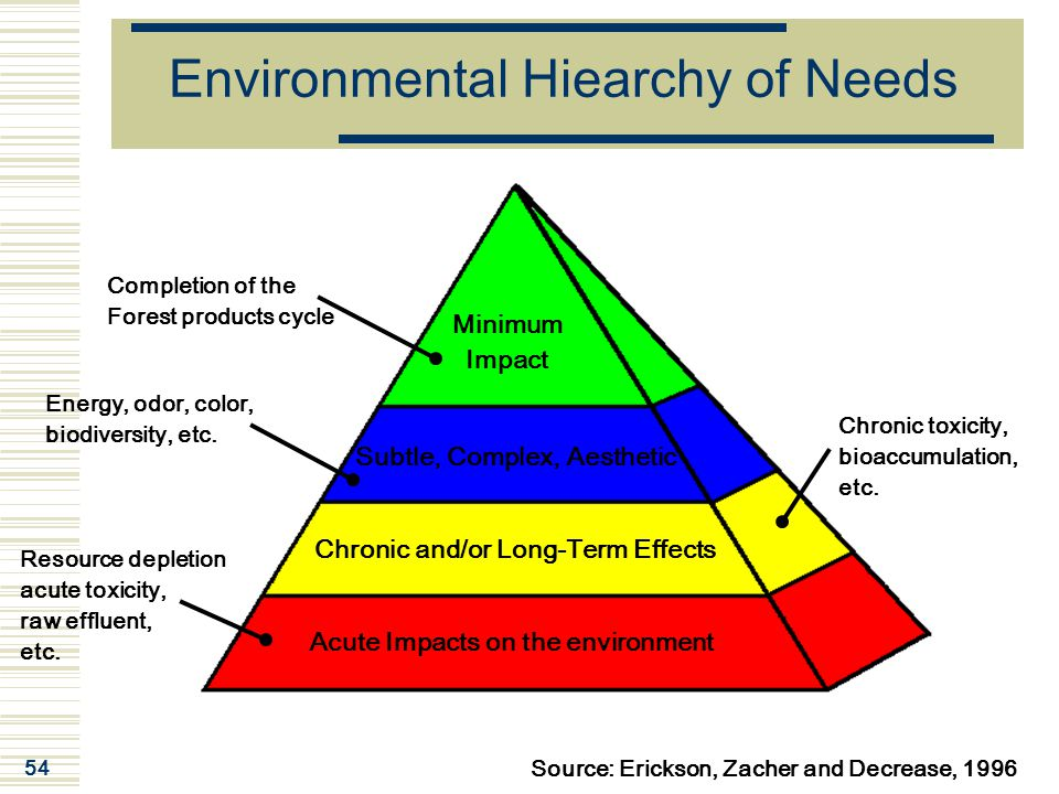 Environmental Hiearchy of Needs