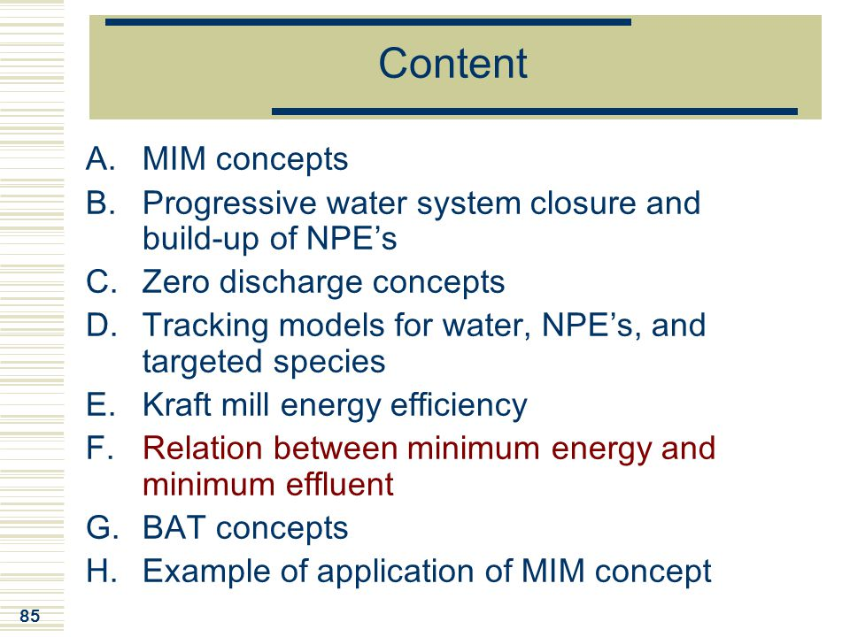 Content MIM concepts. Progressive water system closure and build-up of NPE's. Zero discharge concepts.