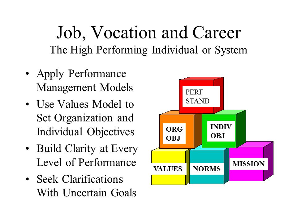 Job, Vocation and Career The High Performing Individual or System