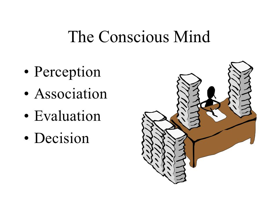 The Conscious Mind Perception Association Evaluation Decision