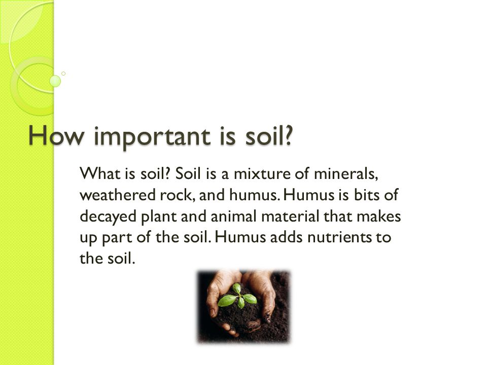 How important is soil