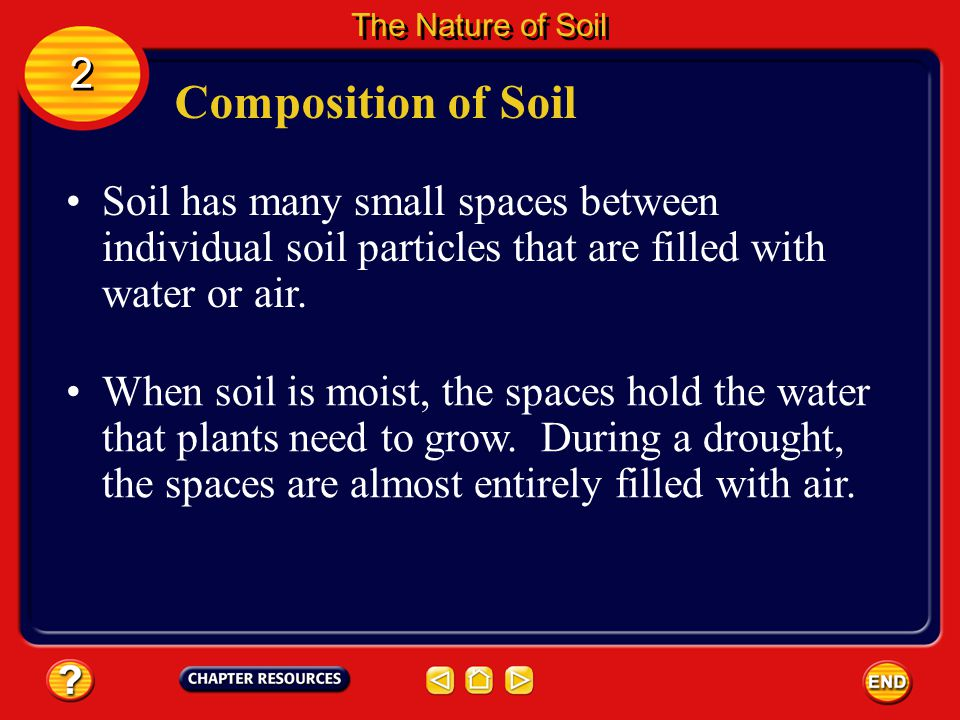 The Nature of Soil 2. Composition of Soil. Soil has many small spaces between individual soil particles that are filled with water or air.