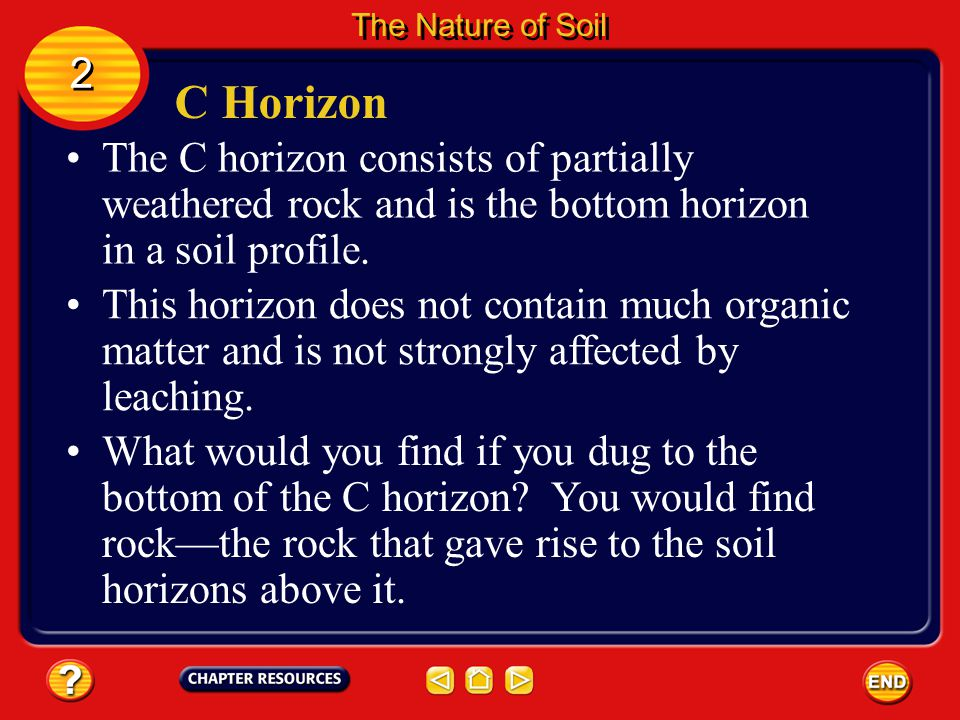 The Nature of Soil 2. C Horizon. The C horizon consists of partially weathered rock and is the bottom horizon in a soil profile.