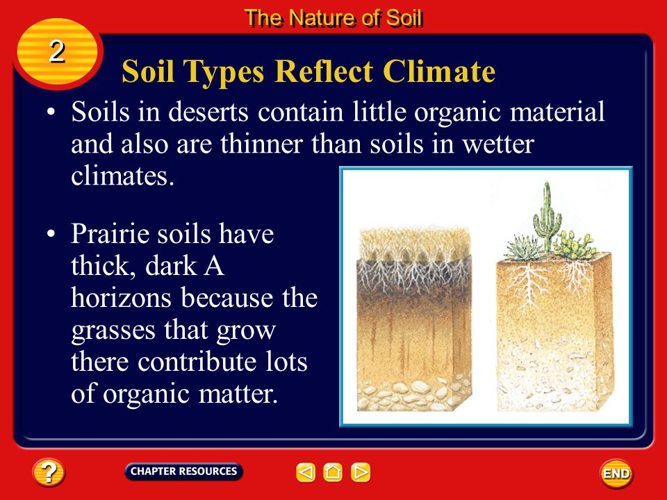 Soil Types Reflect Climate