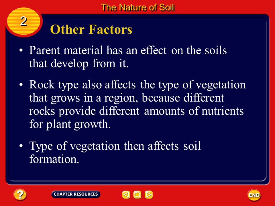 The Nature of Soil 2. Other Factors. Parent material has an effect on the soils that develop from it.