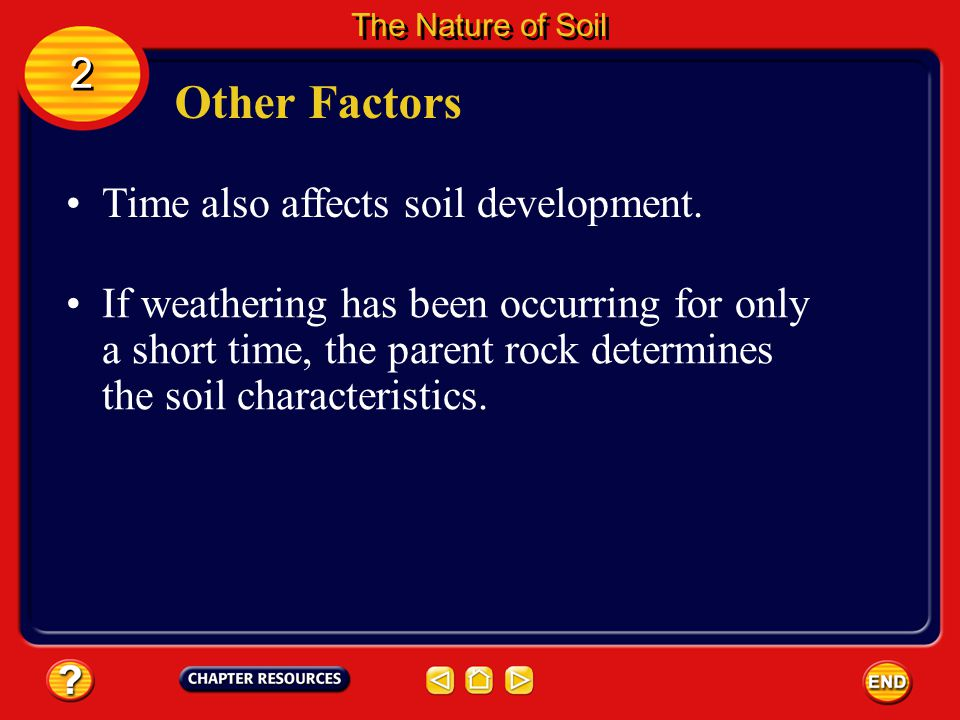 Other Factors 2 Time also affects soil development.