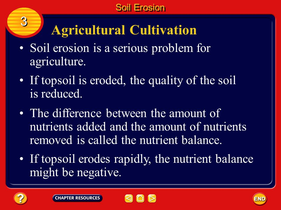 Agricultural Cultivation