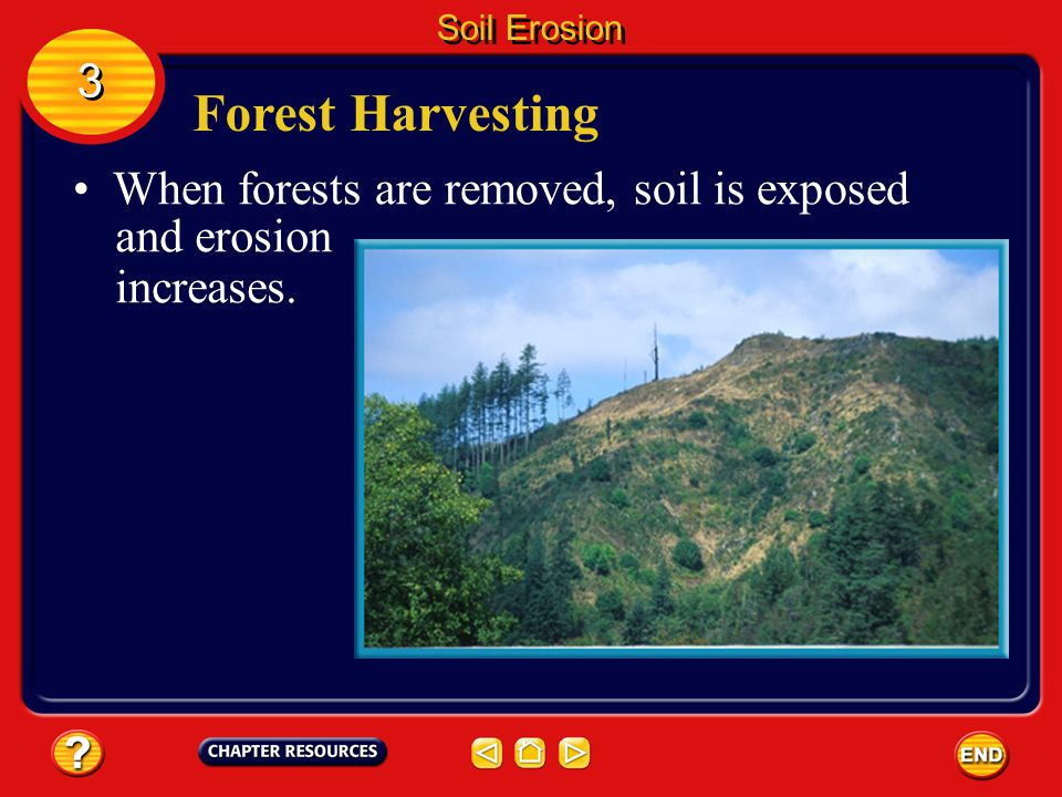 Forest Harvesting 3 When forests are removed, soil is exposed