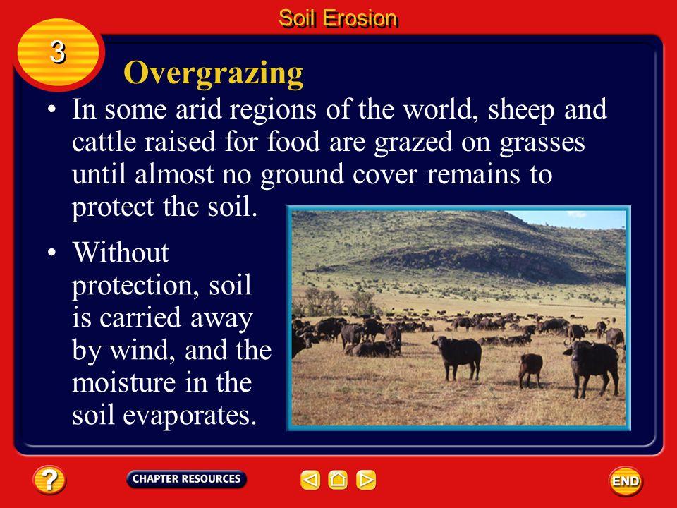 Soil Erosion 3. Overgrazing.
