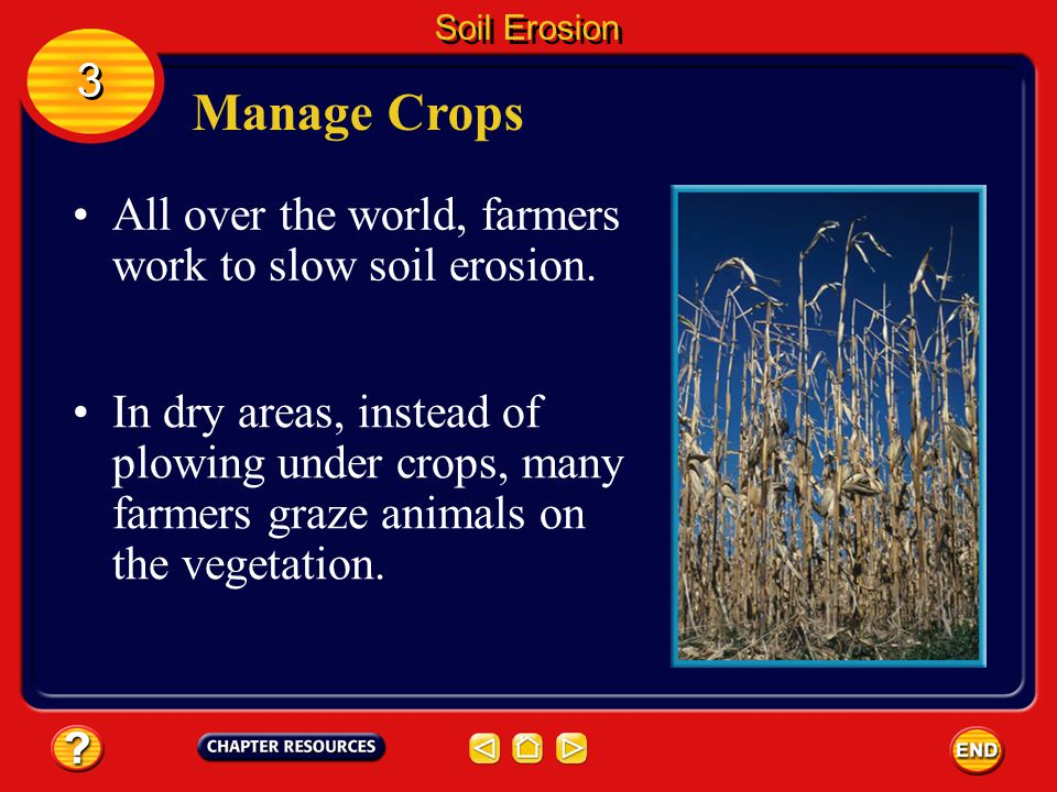 Manage Crops 3 All over the world, farmers work to slow soil erosion.