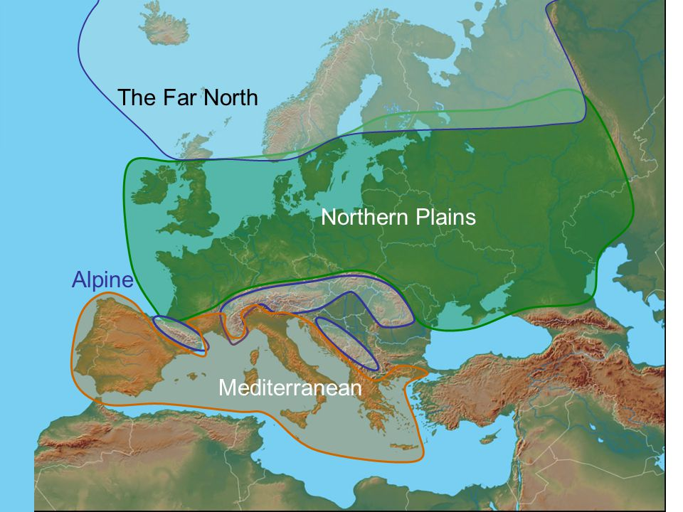 The Far North Northern Plains Alpine Mediterranean