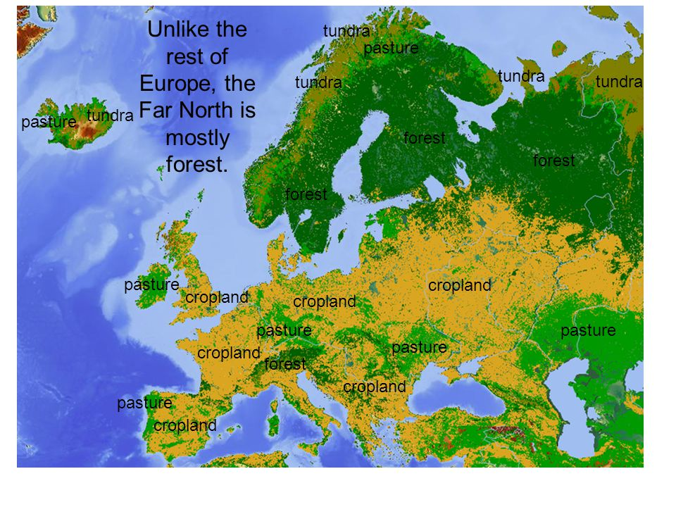 Unlike the rest of Europe, the Far North is mostly forest.