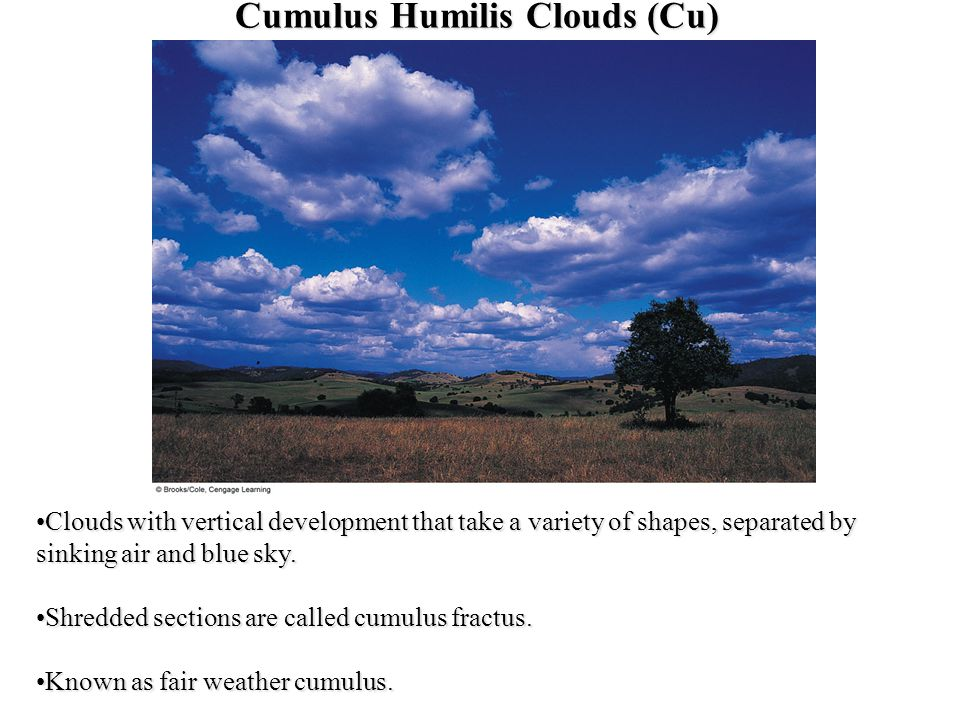 a paper on the development and evolution of cumulus humilis clouds Soft clouds of summer epsosde  these clouds are slightly larger in their vertical development as cumulus humilis they do not always show the shape characteristic cauliflower cumulus.