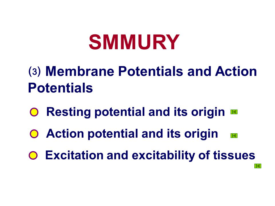 SMMURY ⑶ Membrane Potentials and Action Potentials