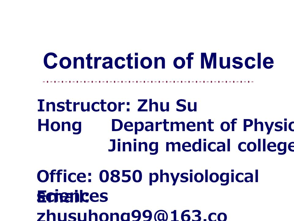Contraction of Muscle Instructor: Zhu Su Hong Department of Physiology