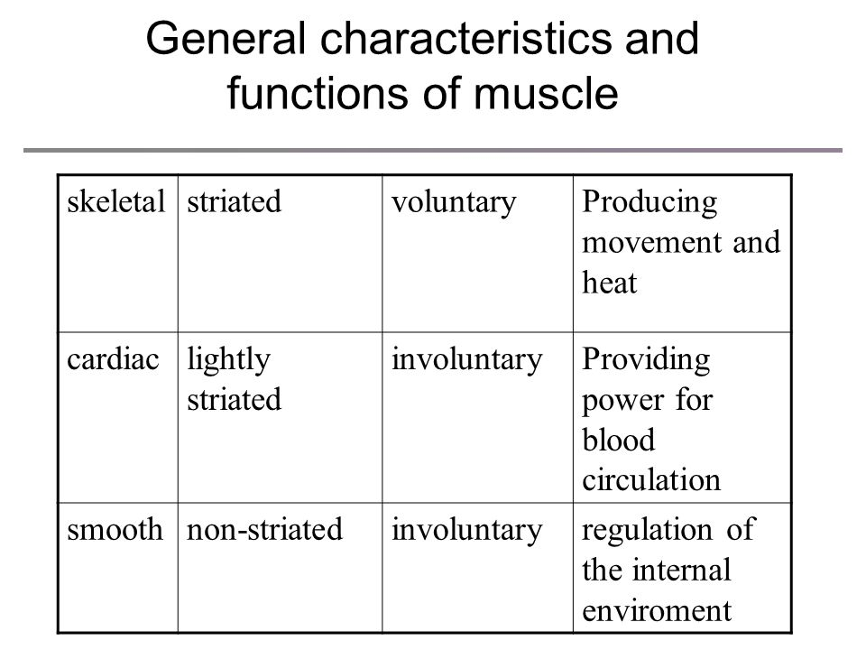 General characteristics and functions of muscle