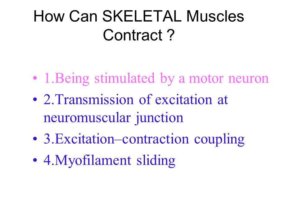 How Can SKELETAL Muscles Contract
