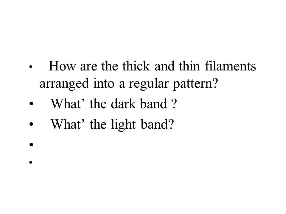 What' the dark band What' the light band