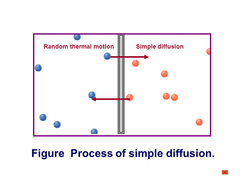 Figure Process of simple diffusion.