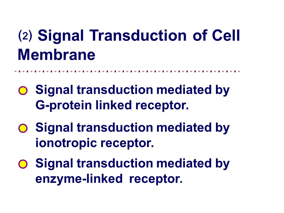 ⑵ Signal Transduction of Cell Membrane