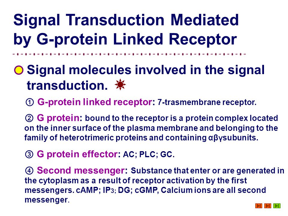 Signal Transduction Mediated by G-protein Linked Receptor