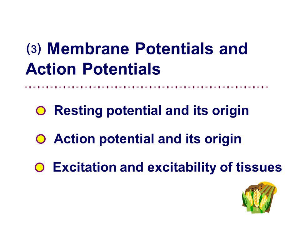 ⑶ Membrane Potentials and Action Potentials