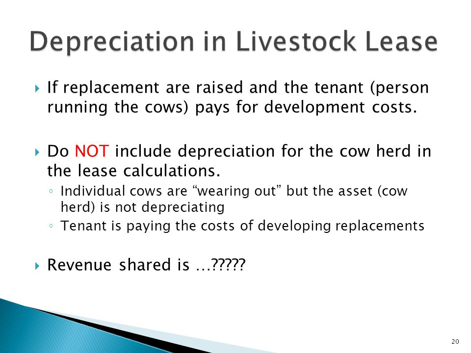 Depreciation in Livestock Lease