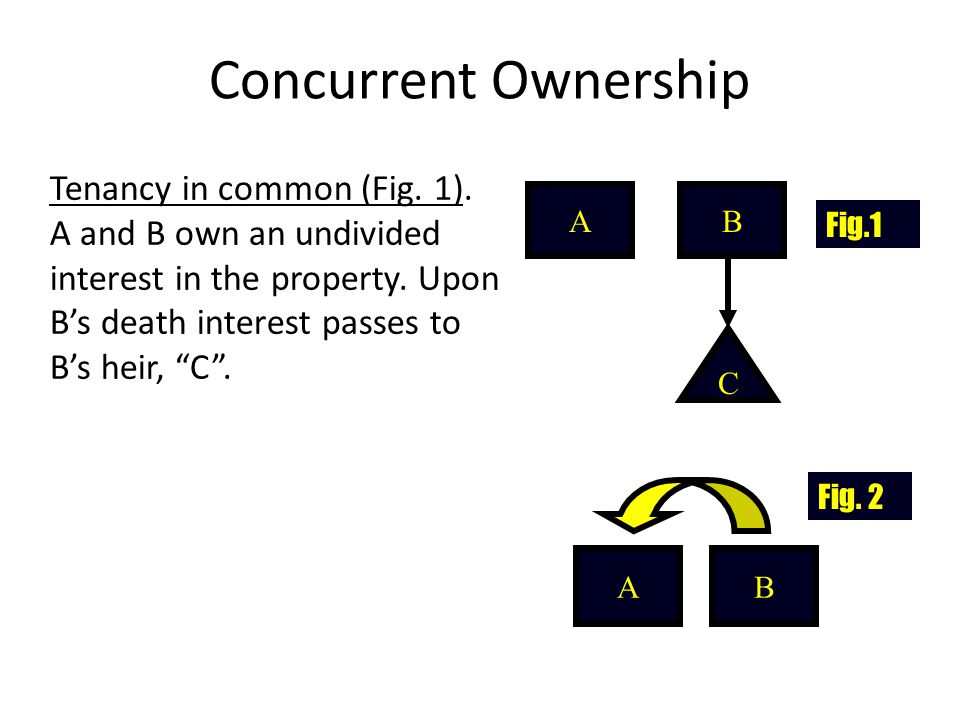 Concurrent Ownership Tenancy in common (Fig. 1). A and B own an undivided interest in the property. Upon B's death interest passes to B's heir, C .