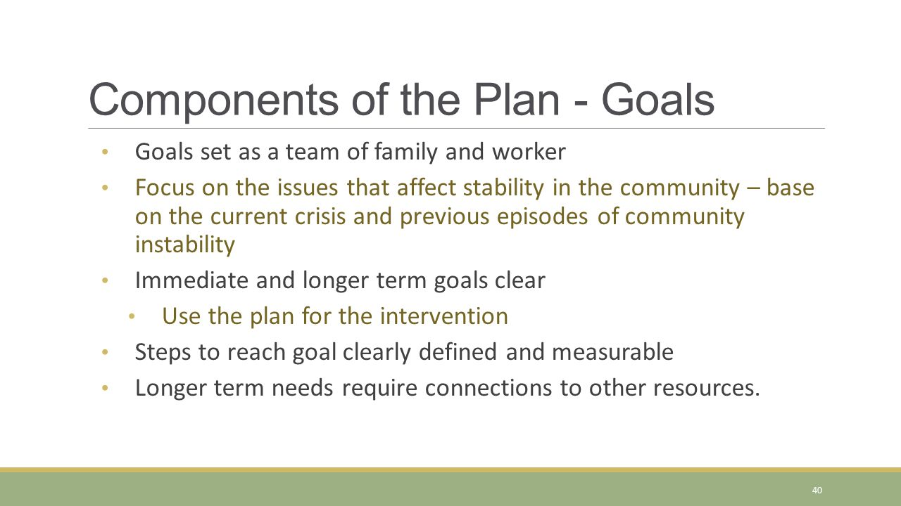 Components of the Plan - Goals