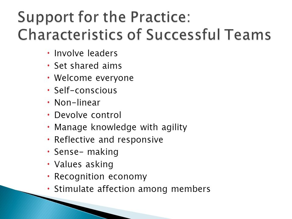 Support for the Practice: Characteristics of Successful Teams