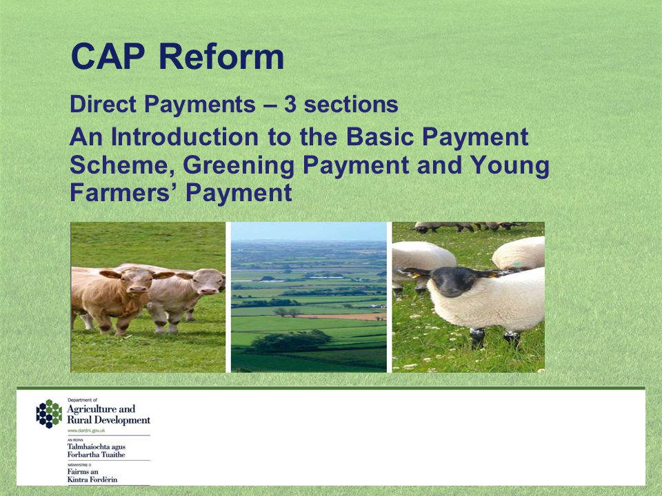 CAP Reform Direct Payments – 3 sections.
