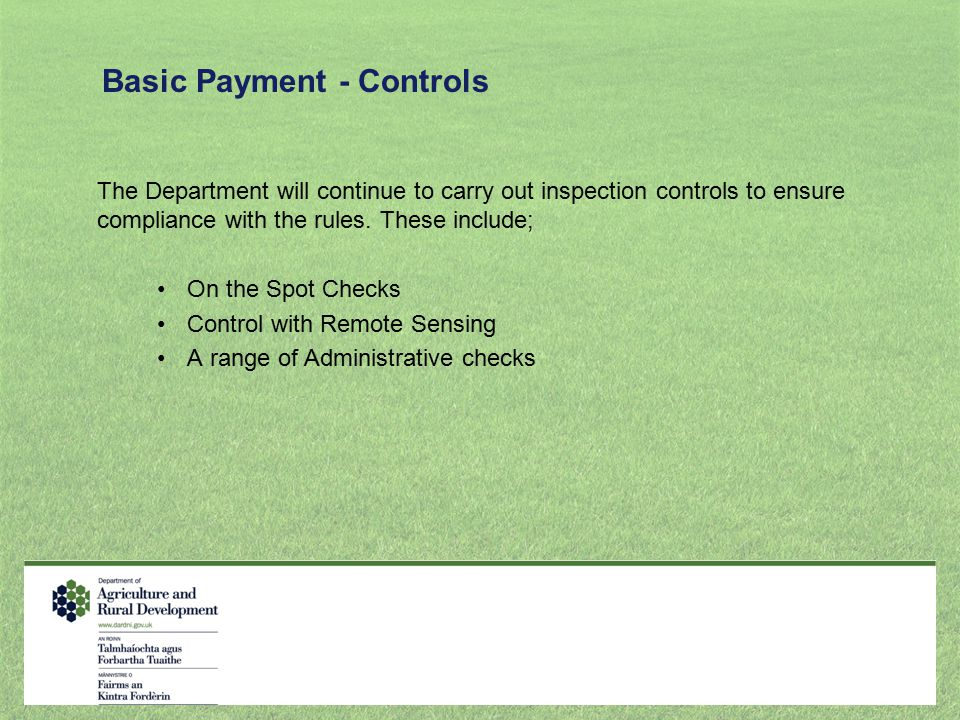 Basic Payment - Controls
